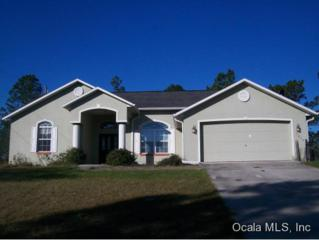 7860 SW 204 AVE  , Dunnellon, FL 34431 (MLS #421553) :: Realty Executives Mid Florida
