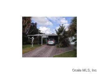 825  Camelia Ct  , Lady Lake, FL 32159 (MLS #421981) :: Realty Executives Mid Florida