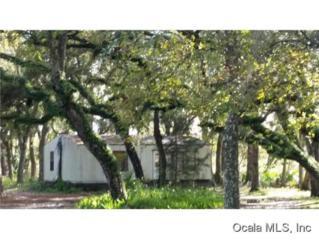 5060 E Stokes Ferry Rd  , Hernando, FL 34442 (MLS #422253) :: Realty Executives Mid Florida