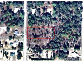 TBD  Carnation Ct  , Dunnellon, FL 34431 (MLS #422834) :: Realty Executives Mid Florida