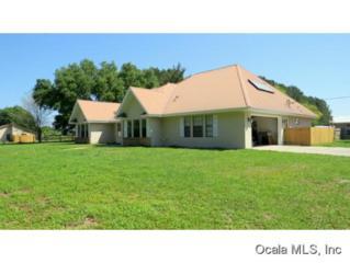 16231 S Magnolia  , Summerfield, FL 34491 (MLS #423325) :: Realty Executives Mid Florida