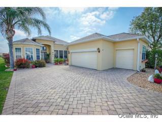 17817 SE 120th Ct  , Summerfield, FL 34491 (MLS #423434) :: Realty Executives Mid Florida