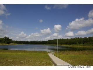 16765 SE 52 Place  , Ocklawha, FL 32179 (MLS #426153) :: Realty Executives Mid Florida