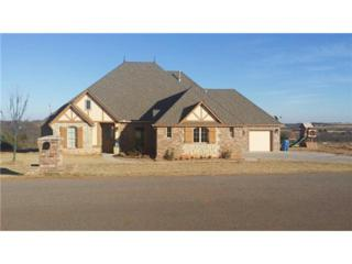 3708  Quest Ct  , Newcastle, OK 73065 (MLS #538869) :: Re/Max Elite