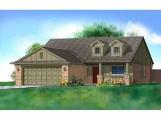 16432  Drywater Drive  , Oklahoma City, OK 73170 (MLS #555515) :: Re/Max Elite