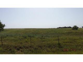 Cs 2960  - 10 Acres (Mol)  , Blanchard, OK 73010 (MLS #558981) :: Re/Max Elite