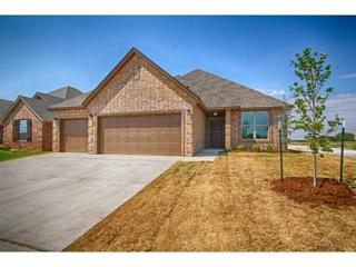 12009  Williamson Farms Blvd  , Oklahoma City, OK 73173 (MLS #564199) :: Re/Max Elite