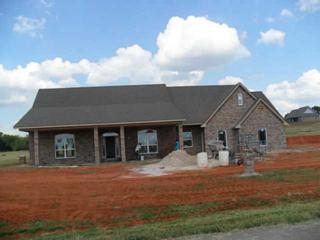 2486  County Road 1258(West Oak Dr.)  , Blanchard, OK 73010 (MLS #566897) :: Re/Max Elite