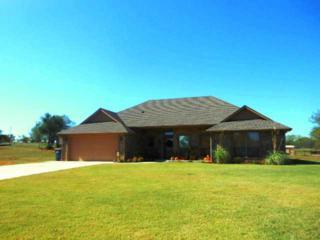 2101  Ash Lynn Court  , Blanchard, OK 73010 (MLS #569317) :: Movers Real Estate