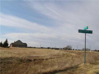 10617  Oaksplinter  , Oklahoma City, OK 73169 (MLS #582963) :: Re/Max Elite