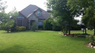 205 N Wyndemere Lakes Dr  , Moore, OK 73160 (MLS #585341) :: Re/Max Elite