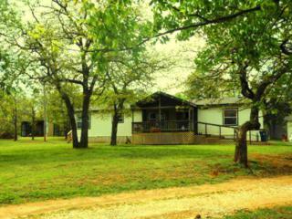26465  Cascara Road  , Blanchard, OK 73010 (MLS #582696) :: Re/Max Elite