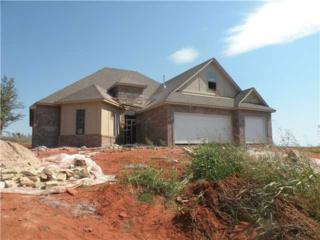 3680  Black Forest  , Newcastle, OK 73065 (MLS #555967) :: Re/Max Elite