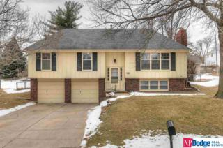 12323  William  , Omaha, NE 68144 (MLS #21502477) :: Your Advantage Team