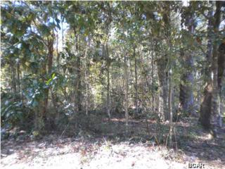 LOT 3  Appalachee Trl  , Marianna, FL 32446 (MLS #626316) :: ResortQuest Real  Estate