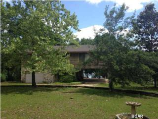 4223  Leisure Lakes Dr  , Chipley, FL 32428 (MLS #631298) :: ResortQuest Real  Estate