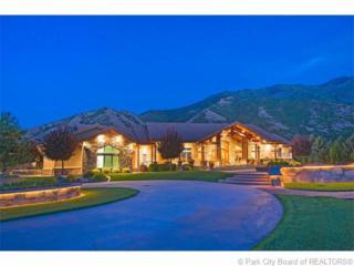750 S 1000 E  , Other City - Utah, UT 84664 (MLS #11501157) :: RE/MAX Associates