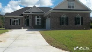 417  Trailwood Drive  , Florence, SC 29541 (MLS #121870) :: RE/MAX Professionals