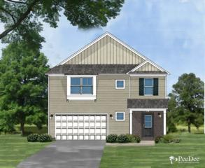 1233  Purple Martin Drive Lot#16  , Florence, SC 29541 (MLS #122210) :: RE/MAX Professionals