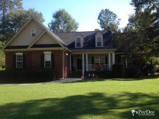 1302  Palmetto Drive  , Hartsville, SC 29550 (MLS #122229) :: RE/MAX Professionals