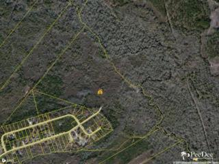 00  Jefferies Creek Blvd  , Florence, SC 29505 (MLS #122760) :: RE/MAX Professionals