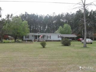 1518  Cox Road  , Pamplico, SC 29583 (MLS #123841) :: RE/MAX Professionals