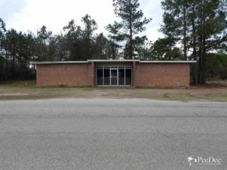 n  Hwy 52  , Coward, SC 29530 (MLS #123842) :: RE/MAX Professionals