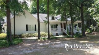 2628  Camellia Hills Dr  , Darlington, SC 29532 (MLS #124532) :: RE/MAX Professionals