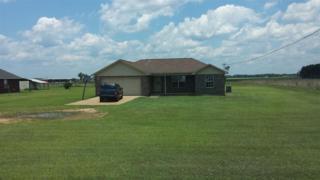 3486  Harvest Rd  , Jay, FL 32565 (MLS #464670) :: Exit Realty NFI