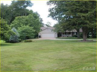 298  Vesta Drive  , Metamora, IL 61548 (#1157941) :: Keller Williams Premier Realty