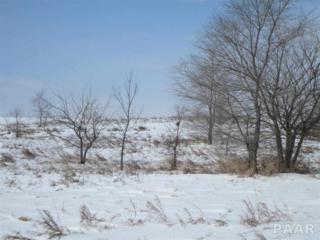 N Wayne Road  , Chillicothe, IL 61523 (#1159676) :: Keller Williams Premier Realty