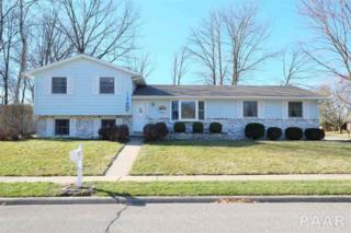 332  Lotus Drive  , Morton, IL 61550 (#1160601) :: Keller Williams Premier Realty
