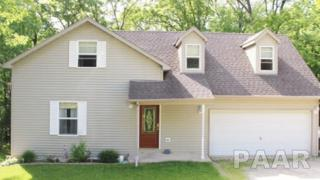 139  Cottonwood Court  , Dahinda, IL 61428 (#1162497) :: Keller Williams Premier Realty