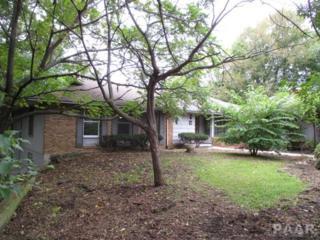 9019 N Picture Ridge Road  , Peoria, IL 61615 (#1156396) :: Keller Williams Premier Realty