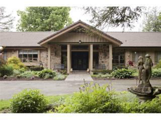206  Entrance Drive  , Indian Lake Boro, PA 15926 (MLS #1014015) :: Keller Williams Realty