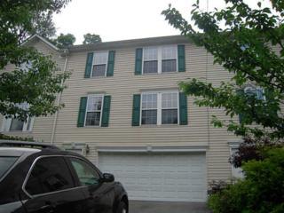 445  Grace Street  , Mt Washington, PA 15211 (MLS #1017092) :: Keller Williams Pittsburgh