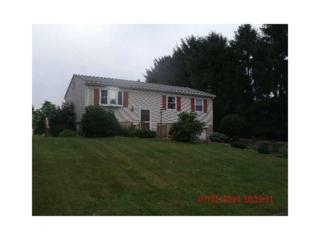 576  Joan St.  , Cranberry Twp, PA 16066 (MLS #1021117) :: Keller Williams Realty