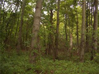 Fern Hollow Road  , Sewickley Hills Boro, PA 15143 (MLS #1025085) :: Keller Williams Realty