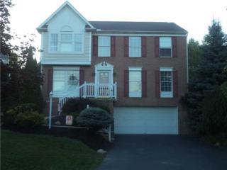 327  Bridlewood Court  , North Strabane, PA 15317 (MLS #1028330) :: Keller Williams Realty