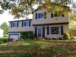 375  Partridge Run Road  , West Deer, PA 15044 (MLS #1033288) :: Keller Williams Realty