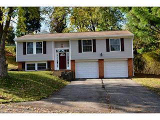 6033  Oak Park Drive  , Bethel Park, PA 15102 (MLS #1033321) :: Keller Williams Realty