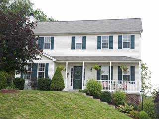 165  Bayberry Lane  , Cranberry Twp, PA 16066 (MLS #1033372) :: Keller Williams Realty
