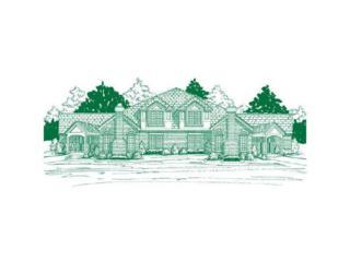 206  Village Green  , Peters Twp, PA 15317 (MLS #1035967) :: Keller Williams Realty