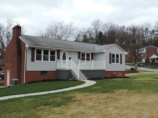 368  Horning  , Bethel Park, PA 15102 (MLS #1038076) :: Keller Williams Realty
