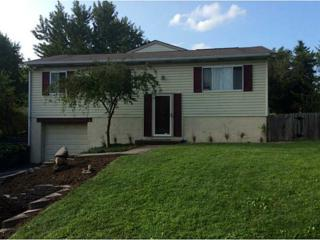 393  Mary St  , Cranberry Twp, PA 16066 (MLS #1038334) :: Keller Williams Realty