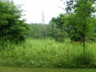 Cemetery Road  , Slippery Rock Twp - But, PA 16057 (MLS #1041737) :: Keller Williams Pittsburgh