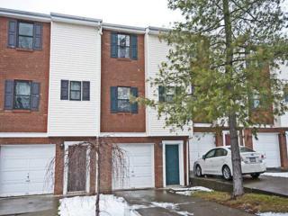 116  Woodhaven Drive  , Seven Fields Boro, PA 16046 (MLS #1041752) :: Keller Williams Realty