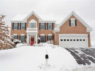 257  Molly Dr.  , Peters Twp, PA 15317 (MLS #1044288) :: Keller Williams Realty