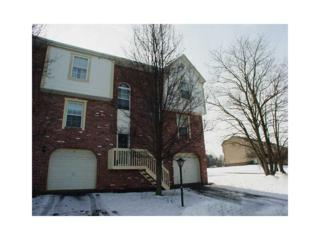 607  Carters Grove Drive  , Richland, PA 15044 (MLS #1045004) :: Keller Williams Realty