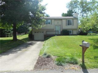 531  Partridge Run Road  , West Deer, PA 15044 (MLS #1049047) :: Keller Williams Realty